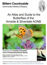 BCCIC Atlas and Guide: Butterflies