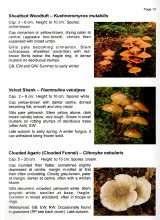 BCCIC Atlas and Guide: Fungi