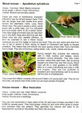 BCCIC Atlas and Guide: Mini-Mammals