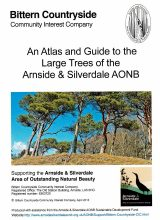 BCCIC Atlas and Guide: Large Trees