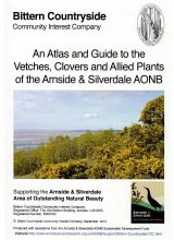BCCIC Atlas and Guide: Vetches, Clovers and Allied Plants